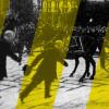 Trieste giallo nera